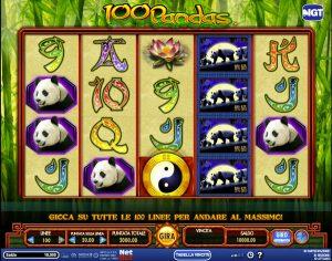 netbet casino AAMS 100 pandas
